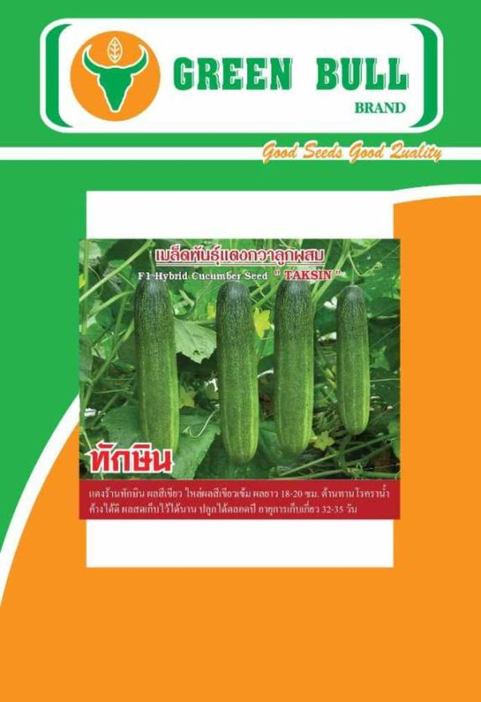 hat giong dau leo lai F1 Thai Lan chat luong cao,เมล็ดพันธุ์แตงกวา,cucumber seeds,Seven 99